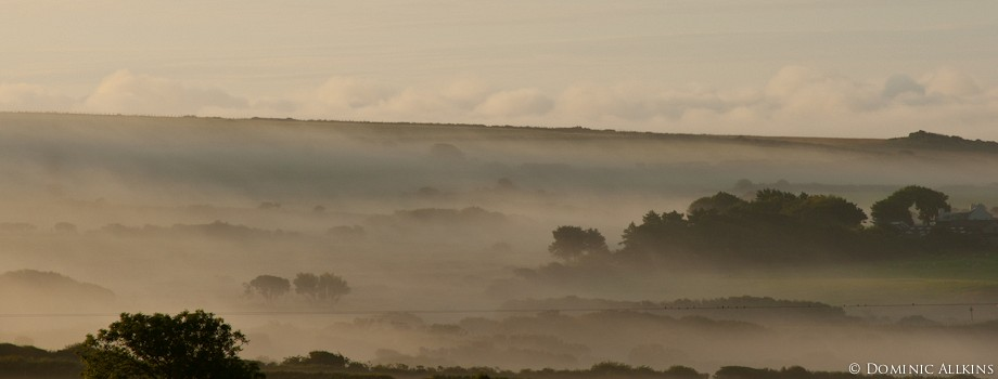 Misty morning in Pembrokeshire