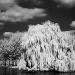 Playing with infra-red